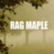 Rag Maple