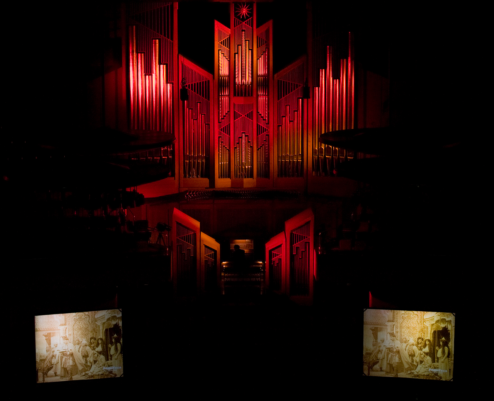 Raul's 'The Organ Project'