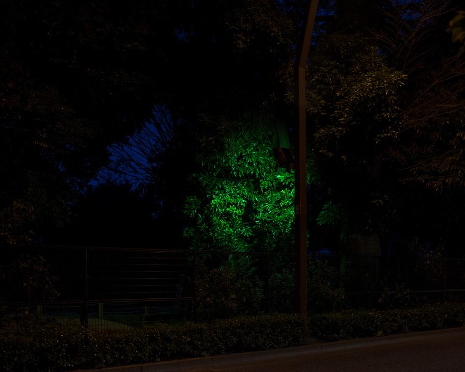 w Retorno - spotlight.jpg