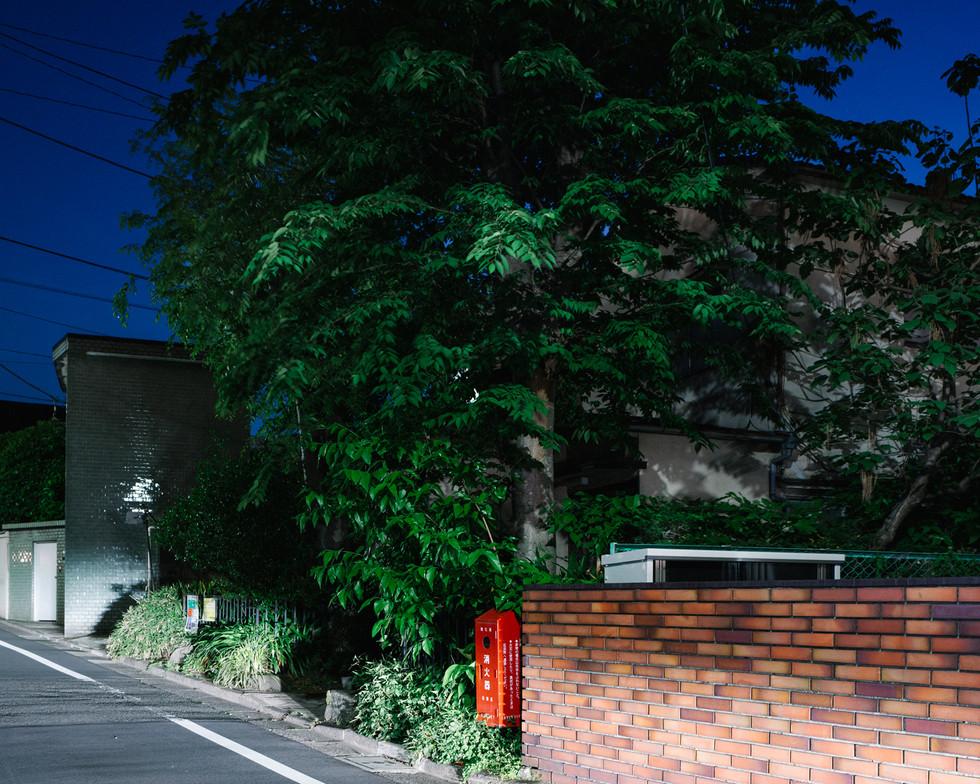 w Nakameguro 1.jpg