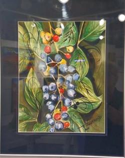 Berries watercolor, T.Haverfield