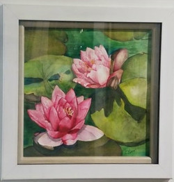 Water Lily watercolor, C.Pasco
