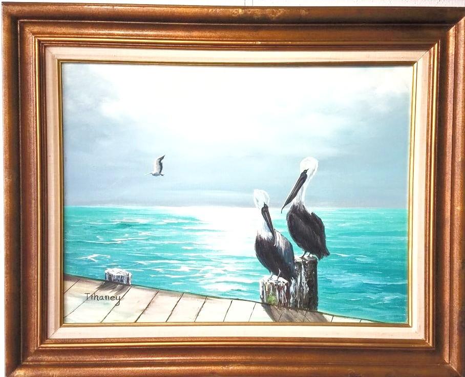 Pelicans Tihaney