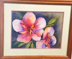 Hybrid Hibiscus watercolor. C.Pasco