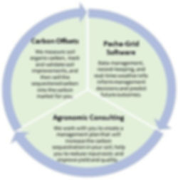 services circle.jpg