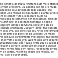 Edmar Almeida IV
