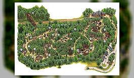 parc chlorophylle.jpg