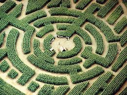 Labyrinthe de Barvaux.jpg