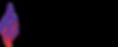 epilepsy foundation logo.png