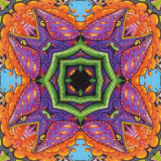 DSC_2266 Kaleidoscope 2.JPG