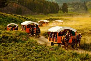 Yellowstone2114.JPG