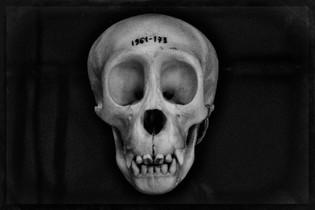 99% 1961_AIR0683_Bones.JPG