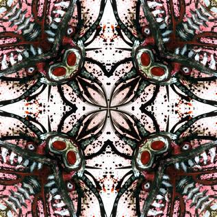 Kujo Kaleidoscope 8.JPG