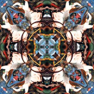Rebel Angels 1 Kaleidoscope Oiled.JPG