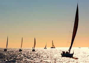 race start  1 sailfish 068 aaa 57 fine a