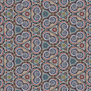 b DSC_5859 Kaleidoscope.JPG