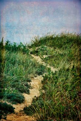 Marconi Dune Path