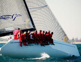 race finals 1 sailfish 034aaa.jpg