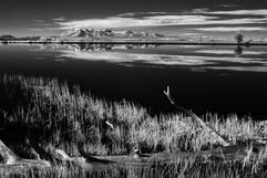 Yellowstone0931-Edit.JPG