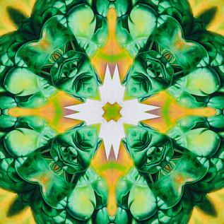 Green Man DSC_1679 Kaleidoscope.JPG