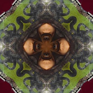 Medussa Eyes Kaleidoscope.JPG