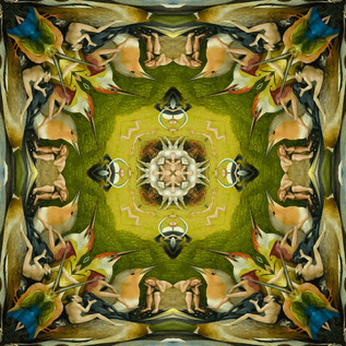 Square 15_The-Garden-of-Earthly-Delights
