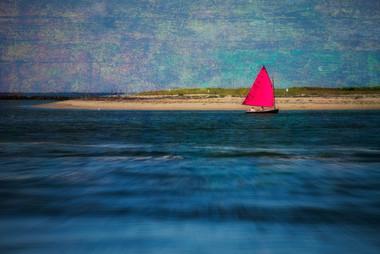Pink SailA1A_5376.jpg