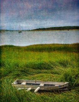 20150911-Grass Flats Wellfleet_B1B0505 S