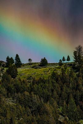Yellowstone1828.JPG