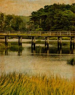 20150911-Wellfleet Marsh-1.jpg