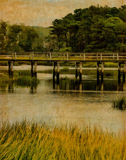 20150911-Wellfleet Marsh-1.jpg