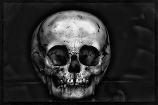 99% Type B_AIR0668_Bones.JPG