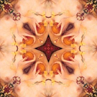Orange 7 Kaleidoscope OILED.JPG