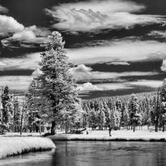 Yellowstone0992.JPG