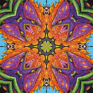 DSC_2266 Kaleidoscope 1.JPG