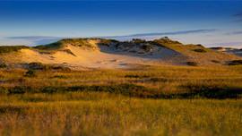 Bokehingher Dunes 69 DSC_0055.JPG