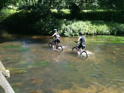 Around Frensham Ponds