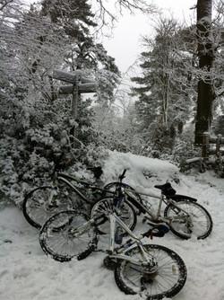Great views and bikingat Blackdown