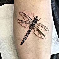 Love this cute dragon fly by @hauntedhat