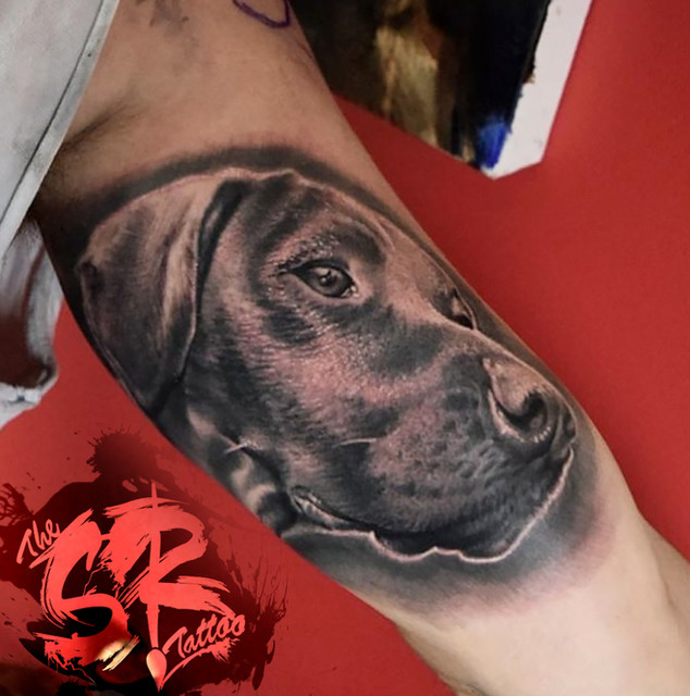 hyper realistic black and grey dog portr