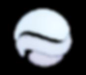 wcfs logoWHITE-03 med.png