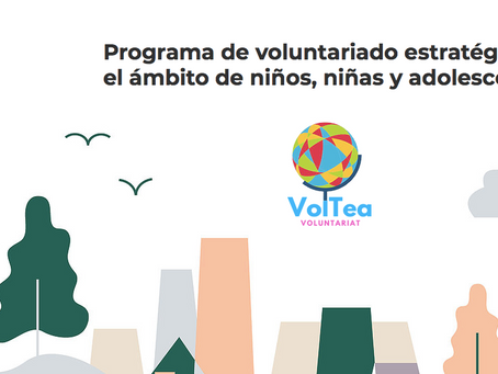 Desarrollamos Voltea Voluntariat