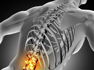 Benefits of Physical Therapy on Spine