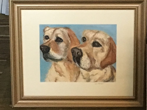 "11"" x 14"" -2 pets. Comes m&f. Email me 2-3 photos, name,age,breed,personality."