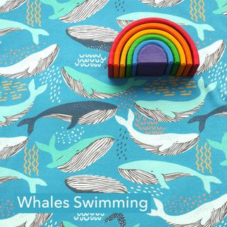 Whales swimming.jpg