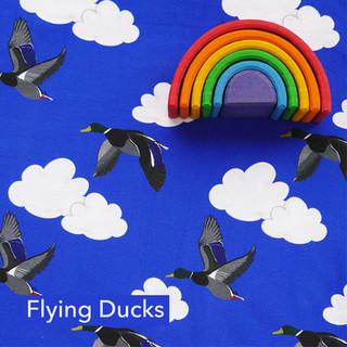 Flying Ducks.jpg