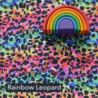 Rainbow Leopard.jpg