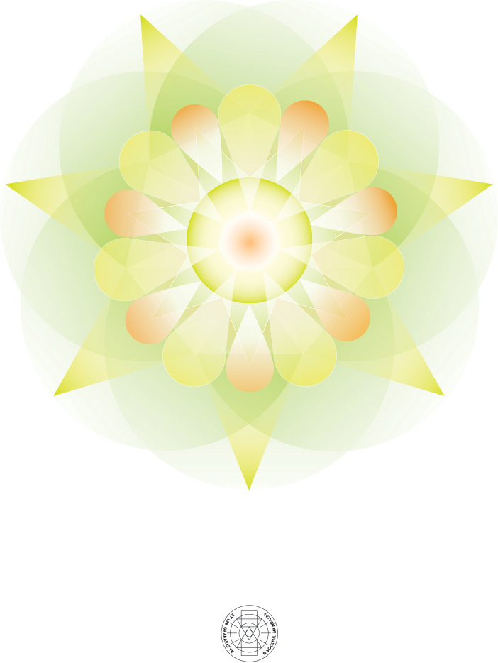 Aggy's_8.5_x11_ no_logo.jpg