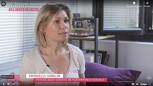 Gnenaelle Hamelin Conseil RPS.jpg
