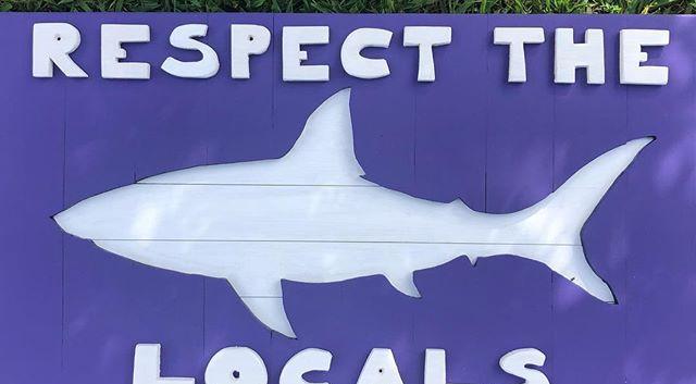 Respect the Locals 🦈